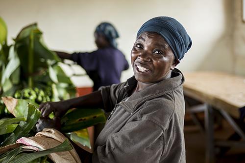 We Effect hjälper fattiga jordbrukare att odla mer och bättre mat.