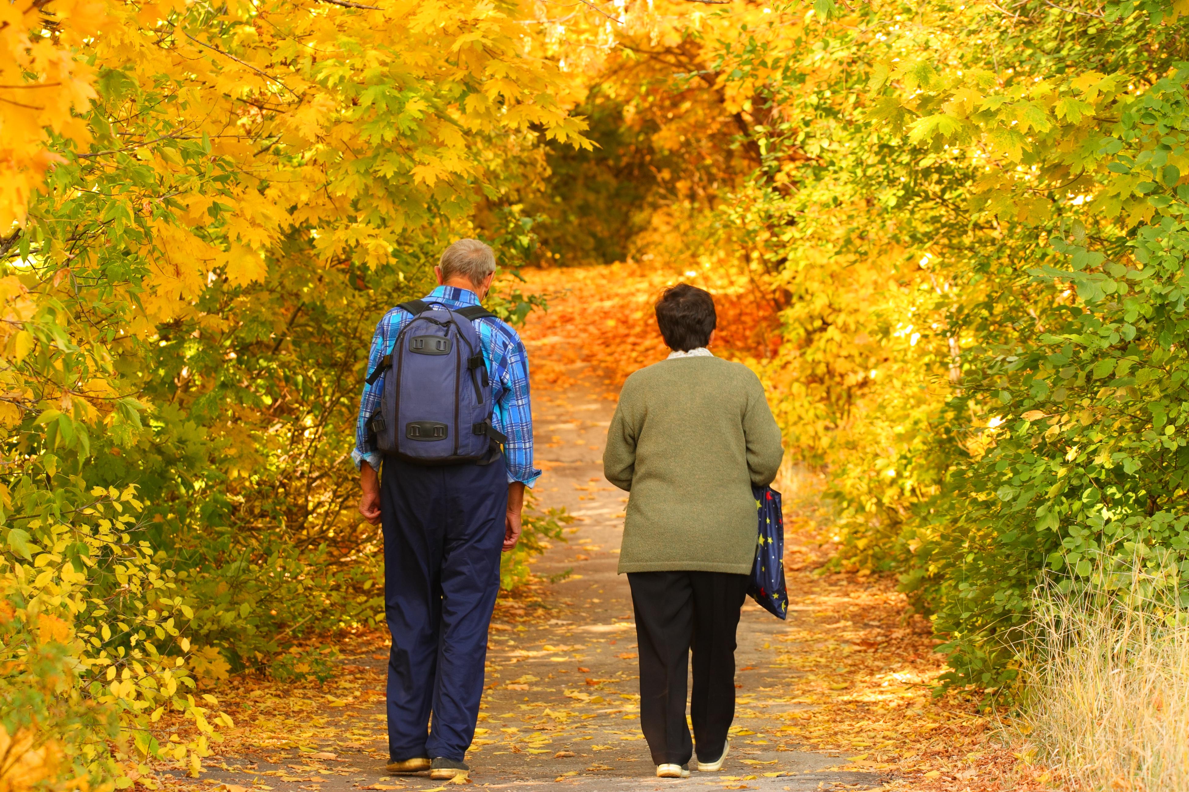 Långvarig smärta leder ofta till minskad fysisk aktivitet, muskulära obalanse...