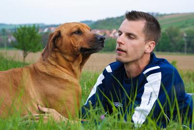 Studien visar många likheter mellan hund och människa när det gäller förslitn...