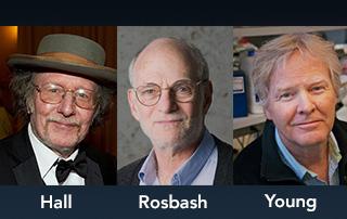 Jeffrey C Hall, Michael Rosbach och Michael Young nobelpris medicin 2017 doktorn anders åker hälsa medicin välbefinnnade netdoktor Nobelpriset DOKTORN puff.jpg