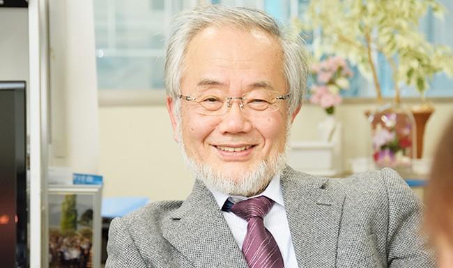 Yoshinori Ohsumi har gjort upptäckter som resulterat i ett paradigmskifte i föreståelsen för hur celler bryts ner och återvinner cellulärt material.