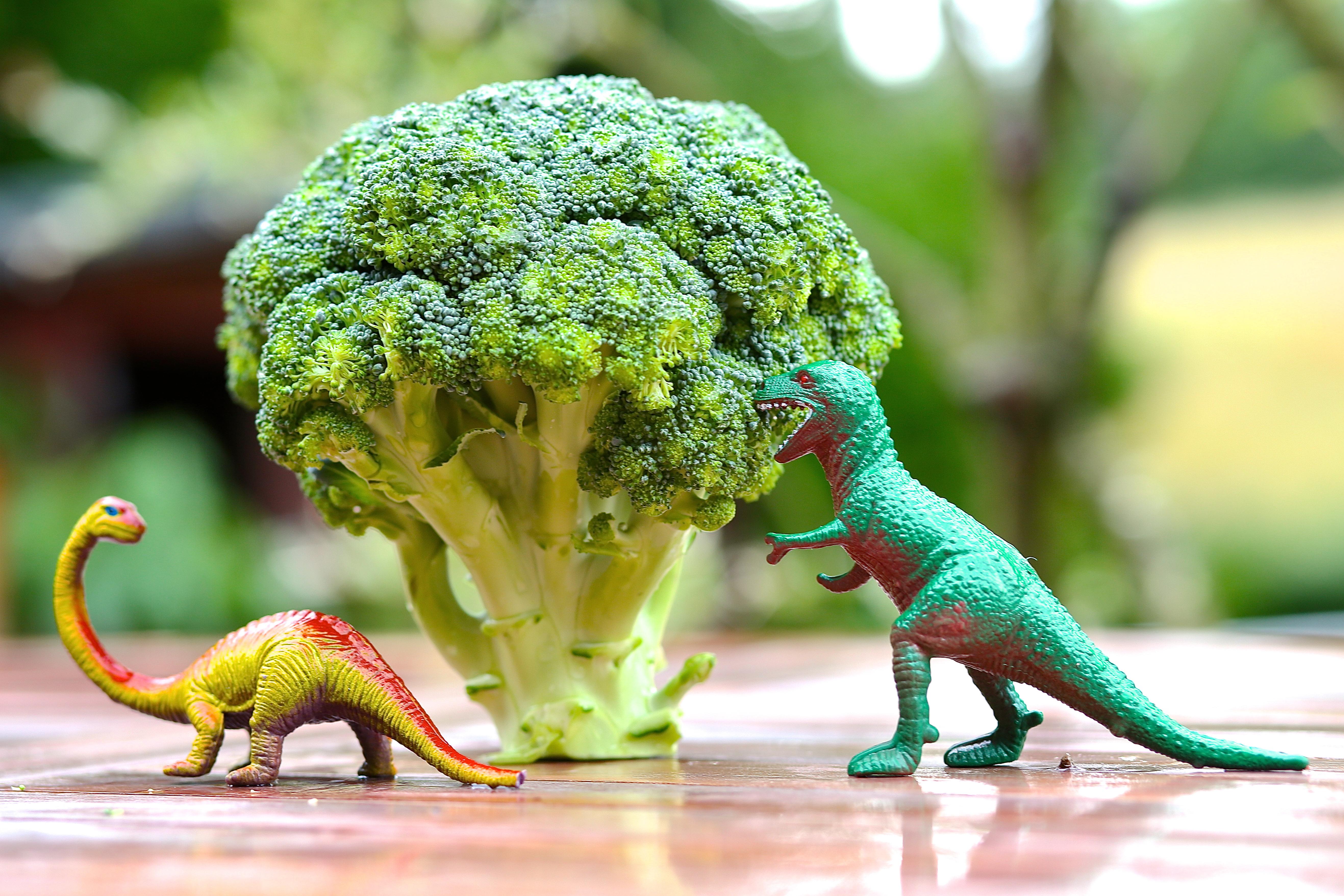 """I studien användes en """"superbroccoli"""" extra rik på näringsämnen."""