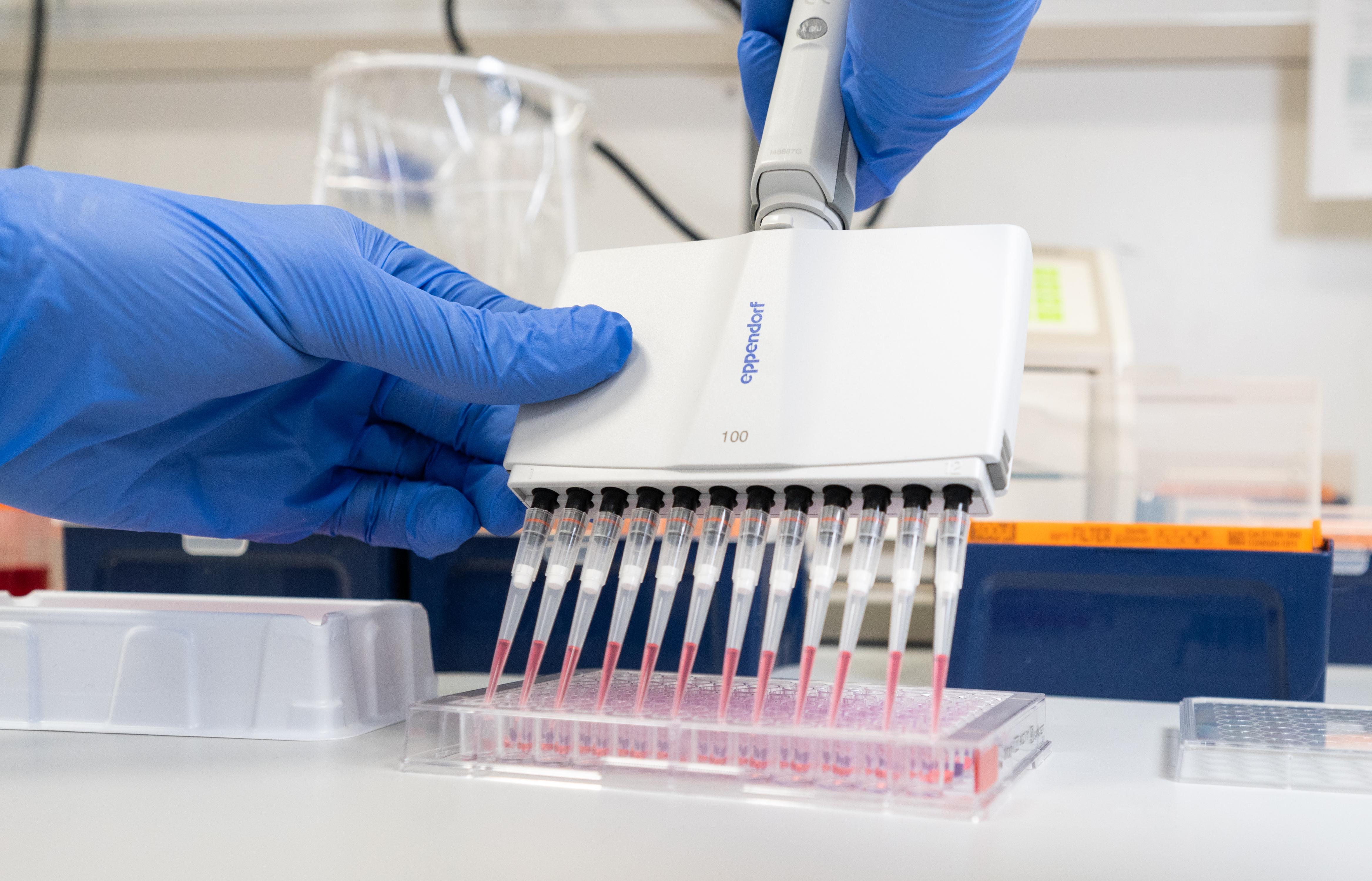 Tidig upptäckt är grundläggande för att snabbt kunna vidta rätt åtgärder för att bryta fortsatt smittspridning konstaterar man från Folkhälsomyndigheten.