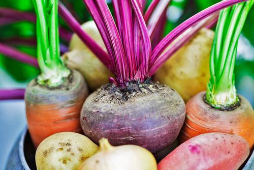 Livsmedelsverkets nya kostråd, till exempel att du bör äta 500 gram grönsaker om dagen, handlar bland annat om att sätta miljön i fokus.