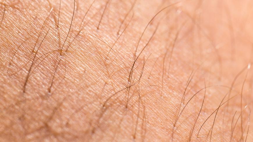 hår på bröstet kvinna