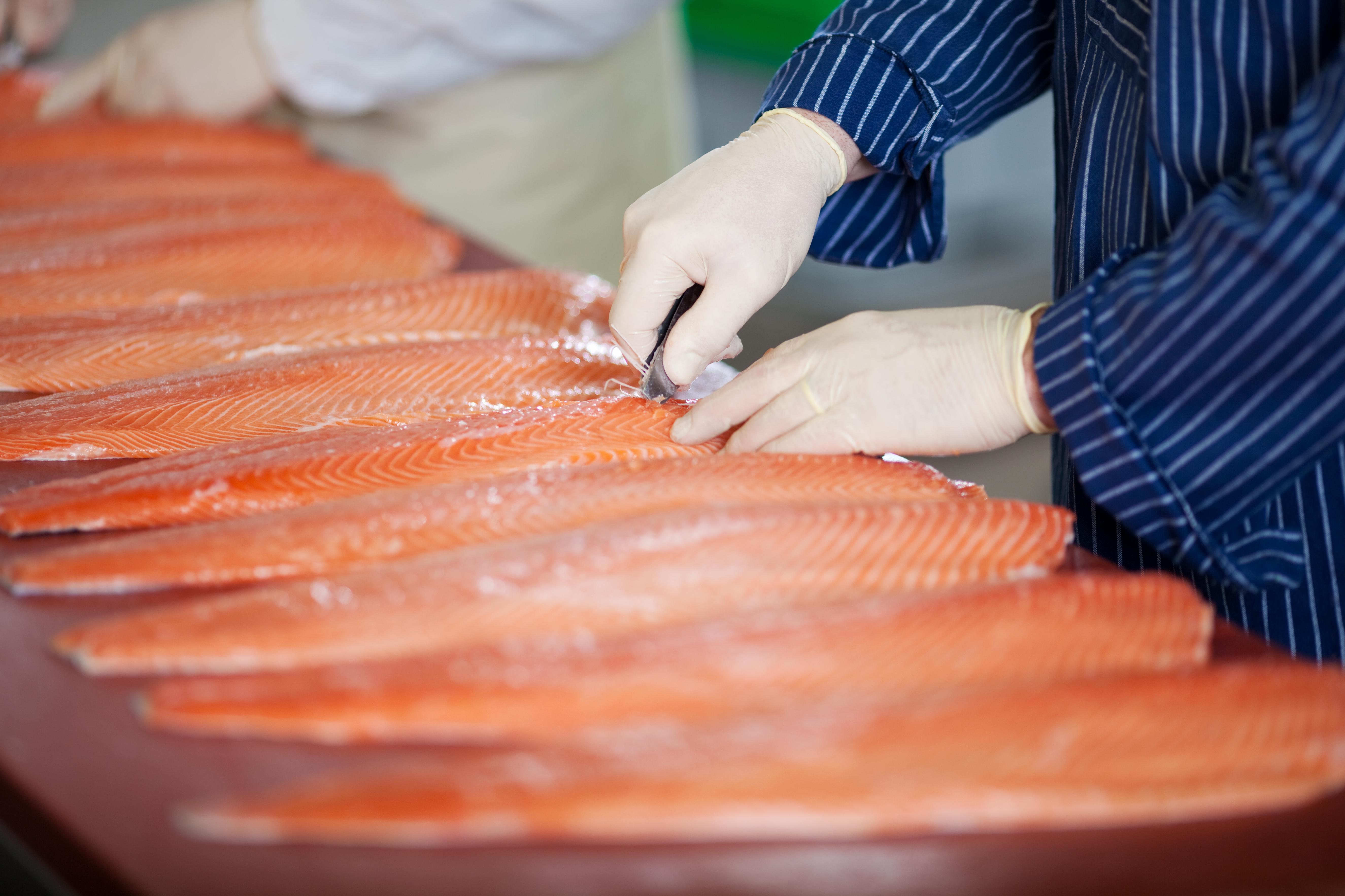D-vitamin kan du bland annat få i dig via fet fisk som lax.