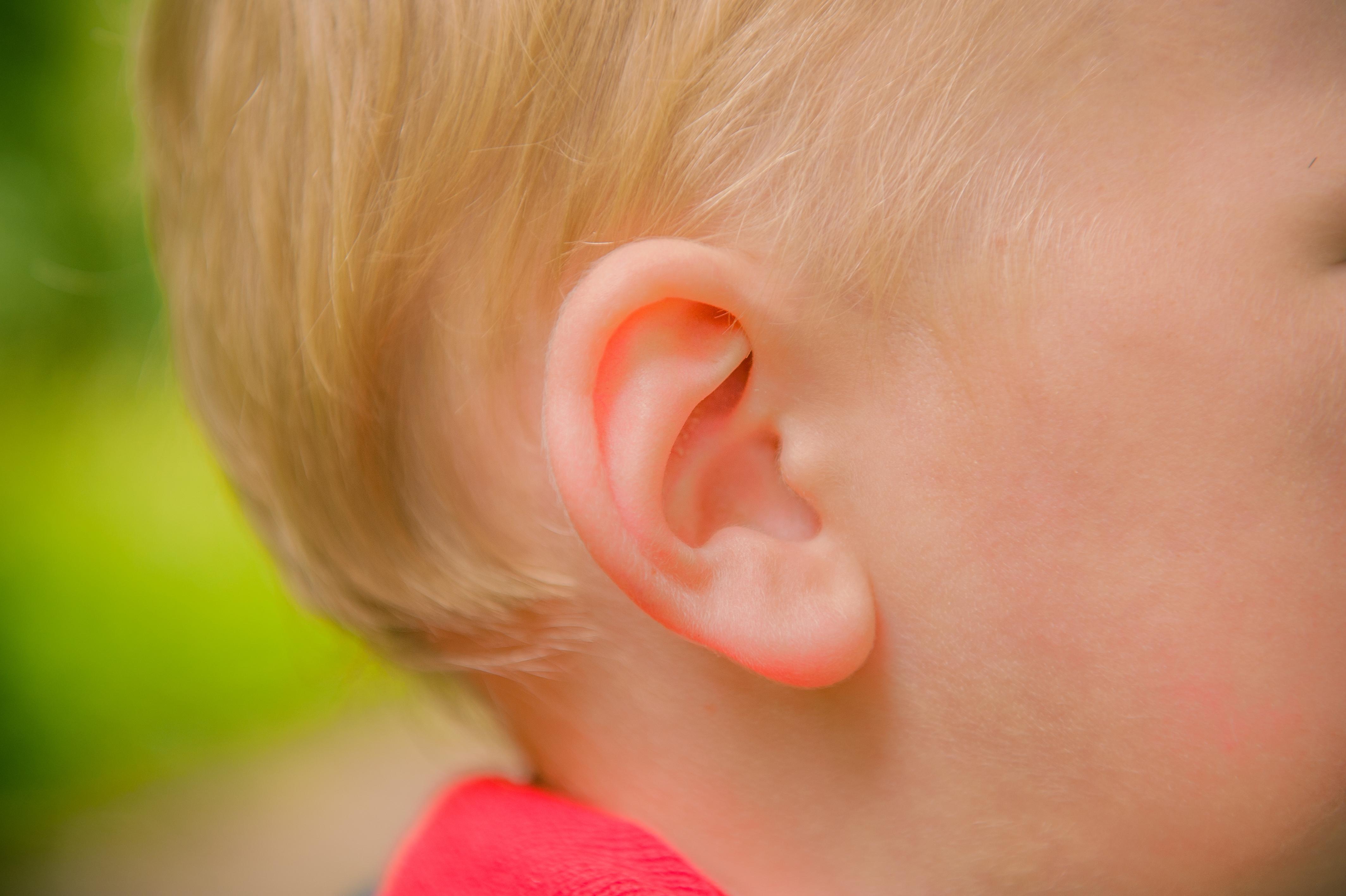 penicillin mot öroninflammation vuxen