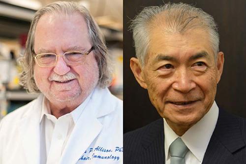 James P. Allison ochTasuko Honjo står för forskning som har lett till banbrytande insatser inom cancerforskning och behandling.