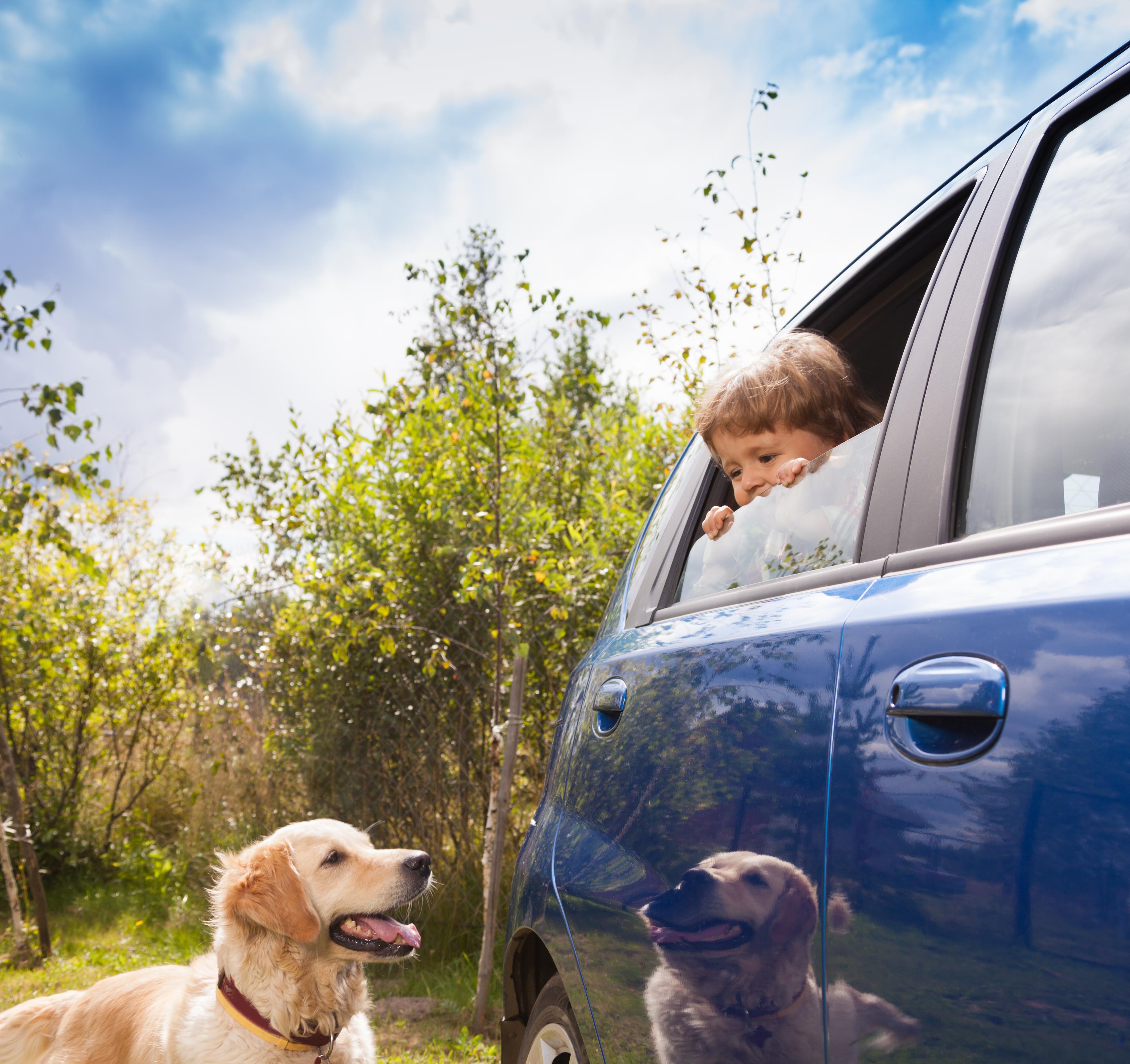 shutterstock_114340972 kopiera värmeslag hälsa medicin välbefinnande djurens hälsa barnens hälsa doktorn ohälsa kopiera.jpg