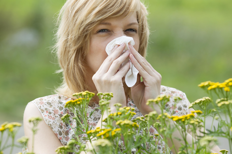 Pollensäsongen är en jobbig tid för alla pollenallergiker. Lär dig känna igen symtom och hur du bäst behandlar din allergi i nedan video.