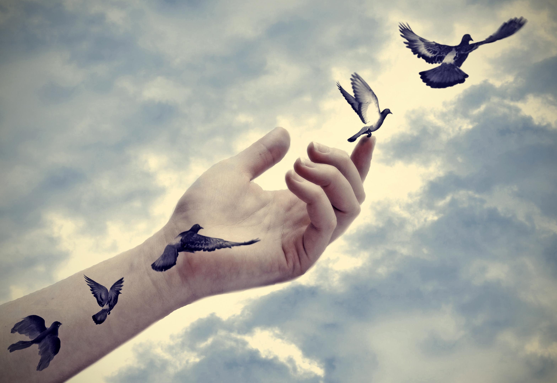 """""""Livet erbjuder oss, varje dag, en ny möjlighet."""""""
