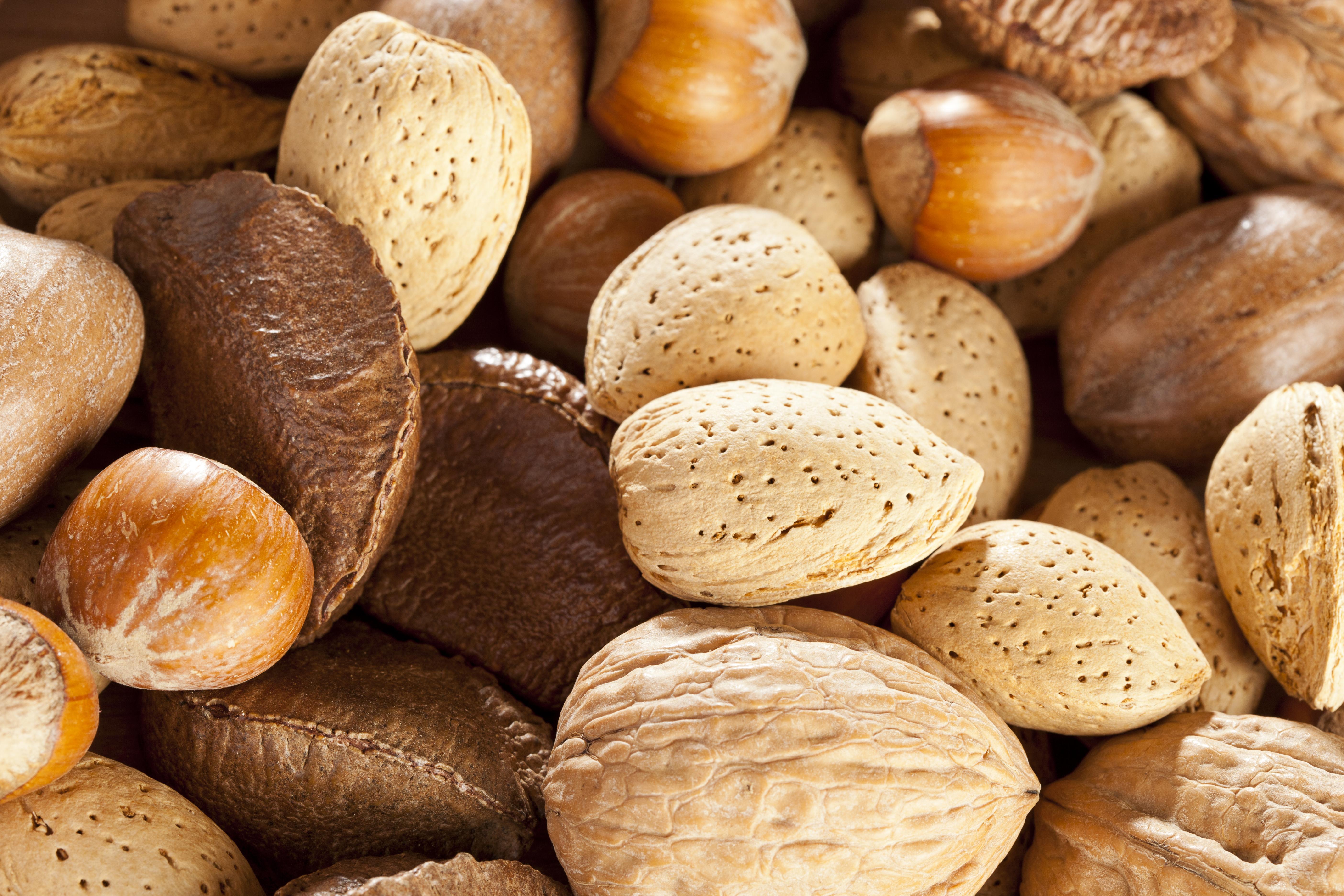Nötallergi kan orsaka allvarliga reaktioner, och hasselnötter är den nöt som flest svenskar är allergiska mot.