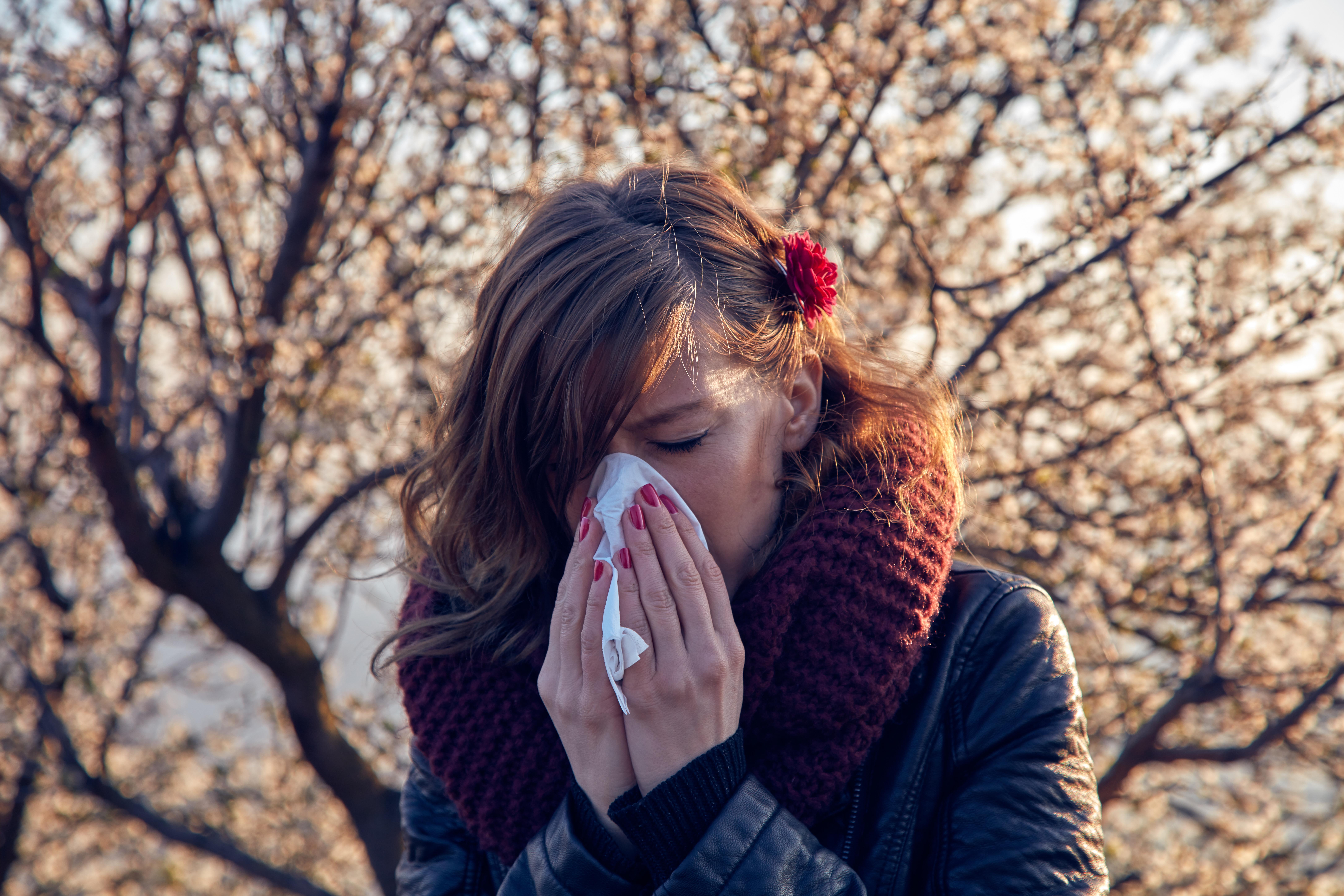Hur besvärande pollensäsongen väntas bli för dig som är pollenallergiker väntas skilja sig stort beroende på var i landet du bor.