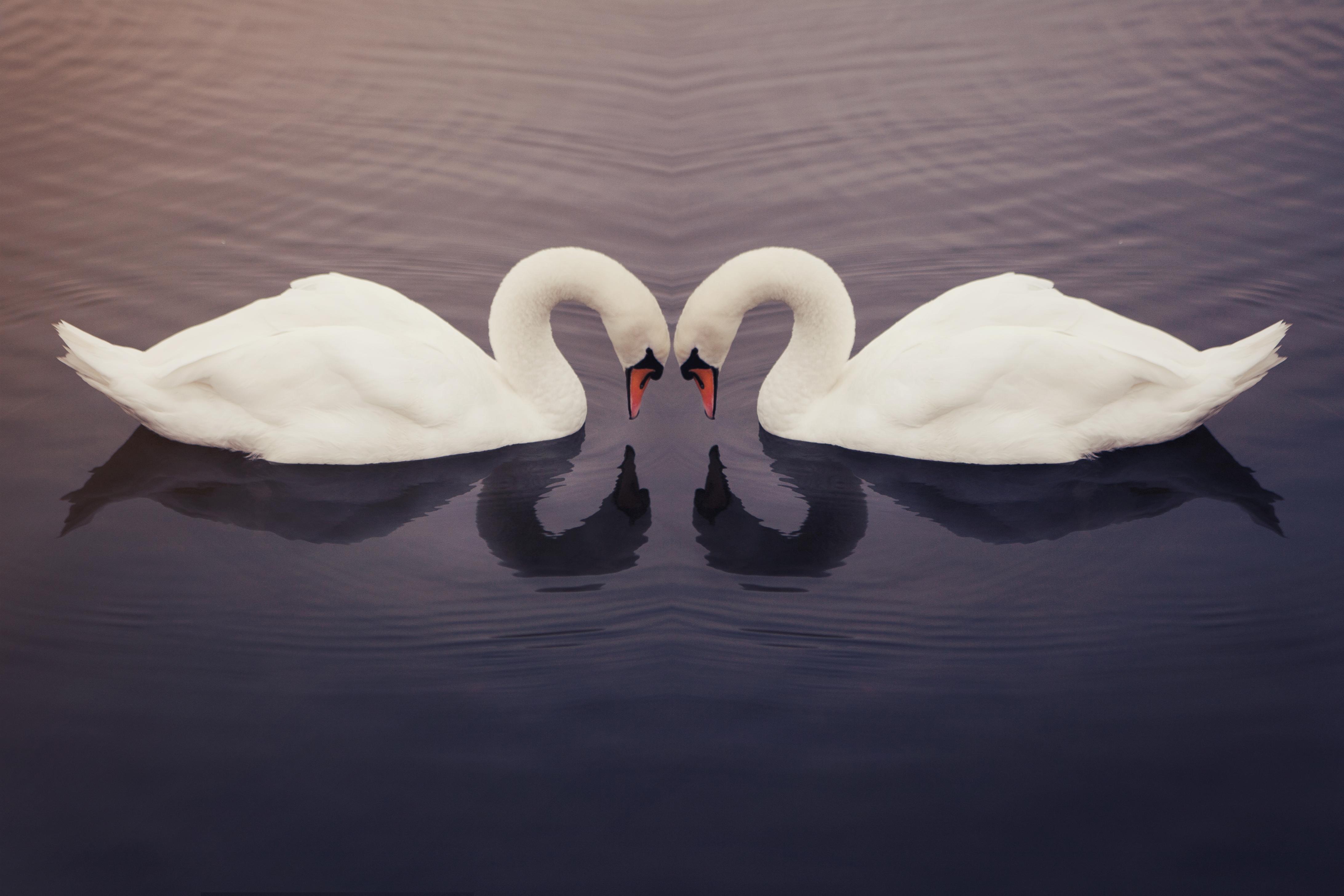 Det gäller att kunna titta på sig själv och sin partner med de mjukaste ögon.