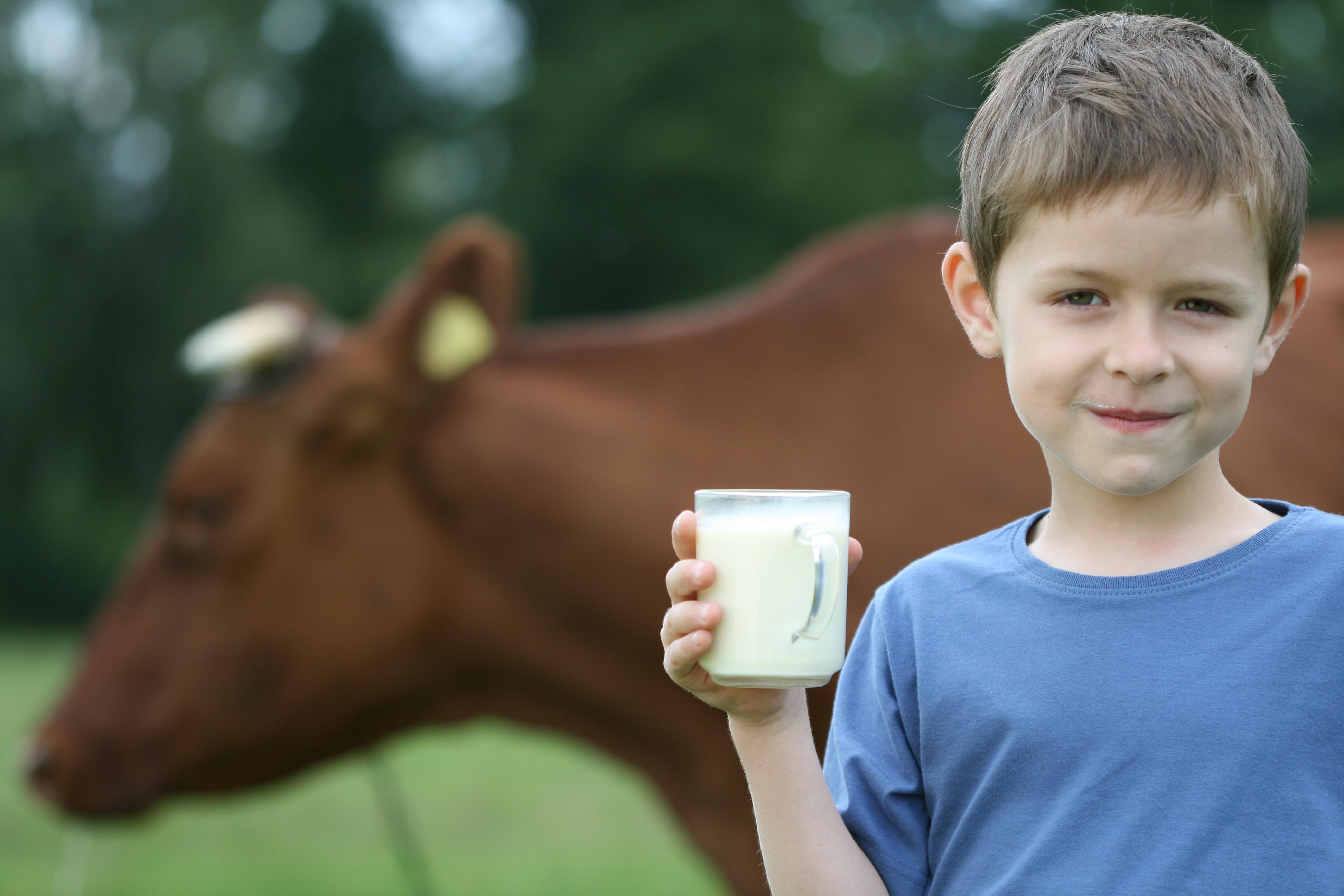 I studien vägde barn som dagligen drack standardmjölk i genomsnitt strax över fyra kilo mindre.