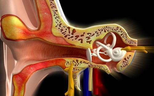 Menières sjukdom är en åkomma i innerörat som leder till bland annat hörselnedsättningar.
