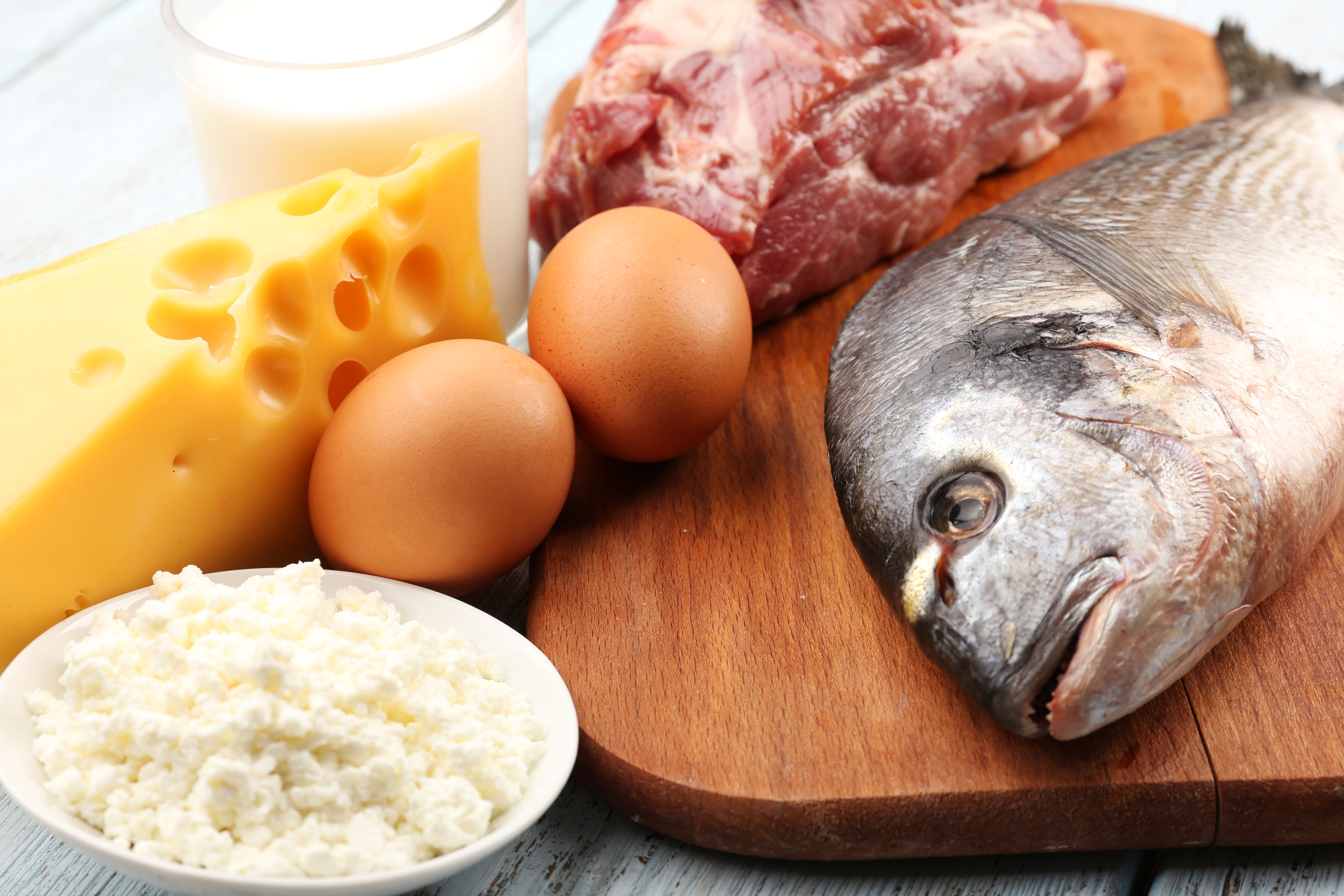 B12 finns i animaliska produkter såsom kött, skaldjur, mjölk, ost och ägg.