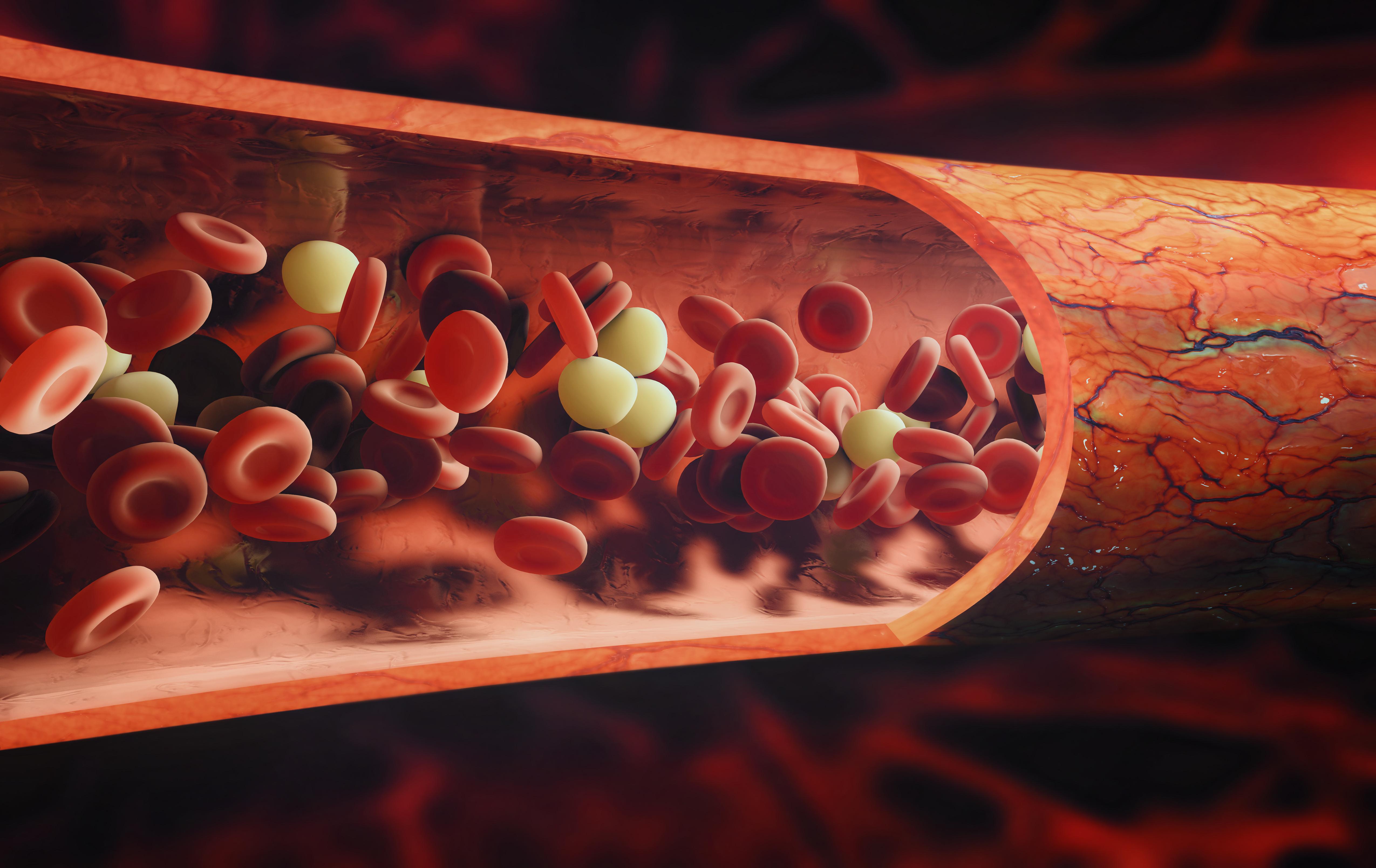 Trombocyternas huvuduppgift är att hejda blödningar som uppstått i kroppens blodkärl genom att täppa igen de öppna sår som uppstått.