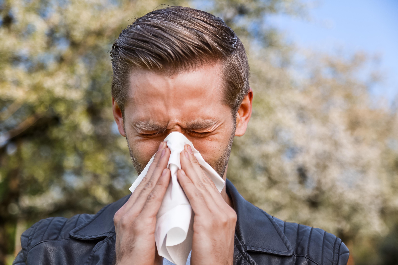 För pollenallergiker är det viktigt att redan tidigt på våren, när de första symtomen gör sig påminda, påbörja behandling.