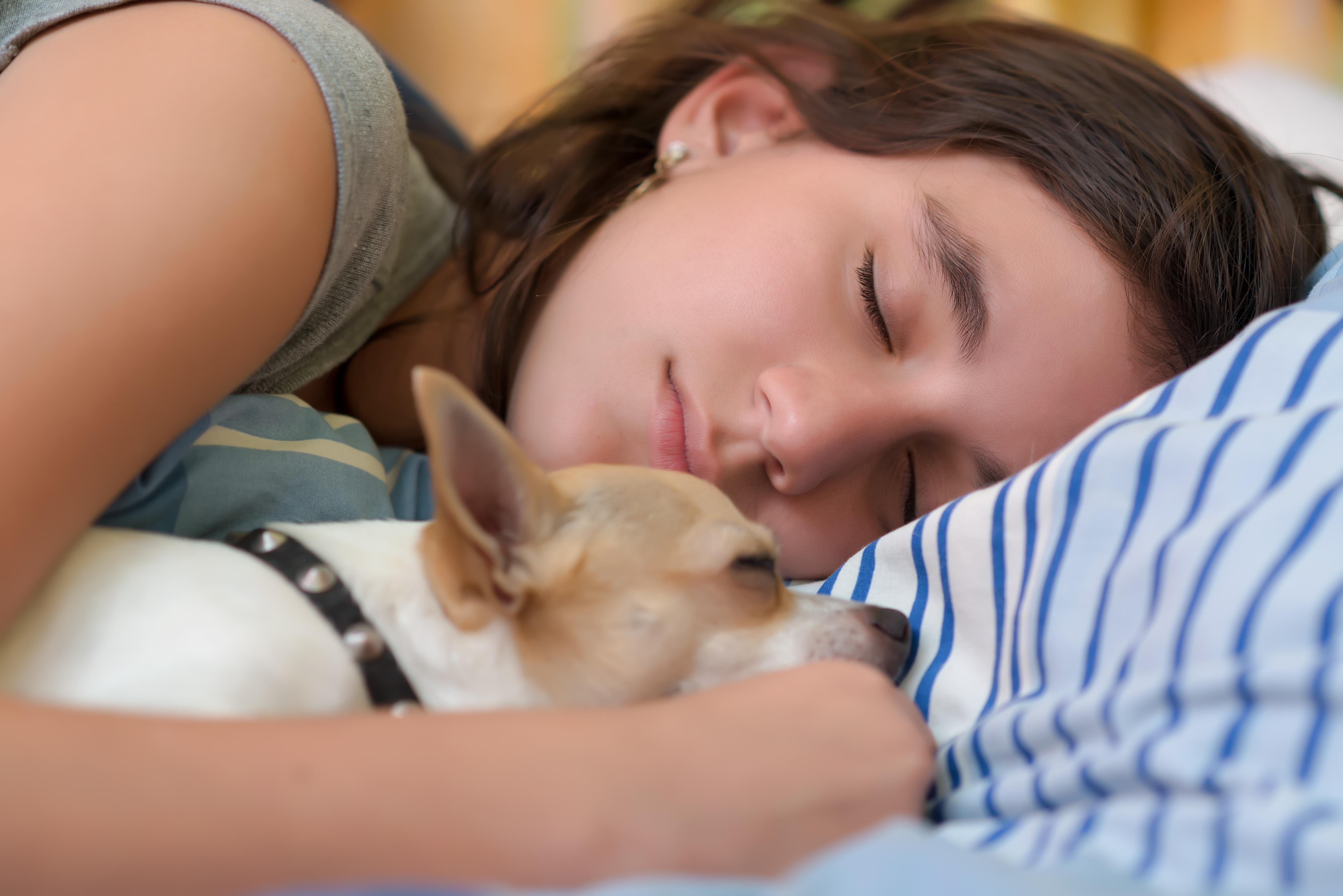 Att låta hunden eller katten sova i sängen kan ge bättre sömn visar forskning.