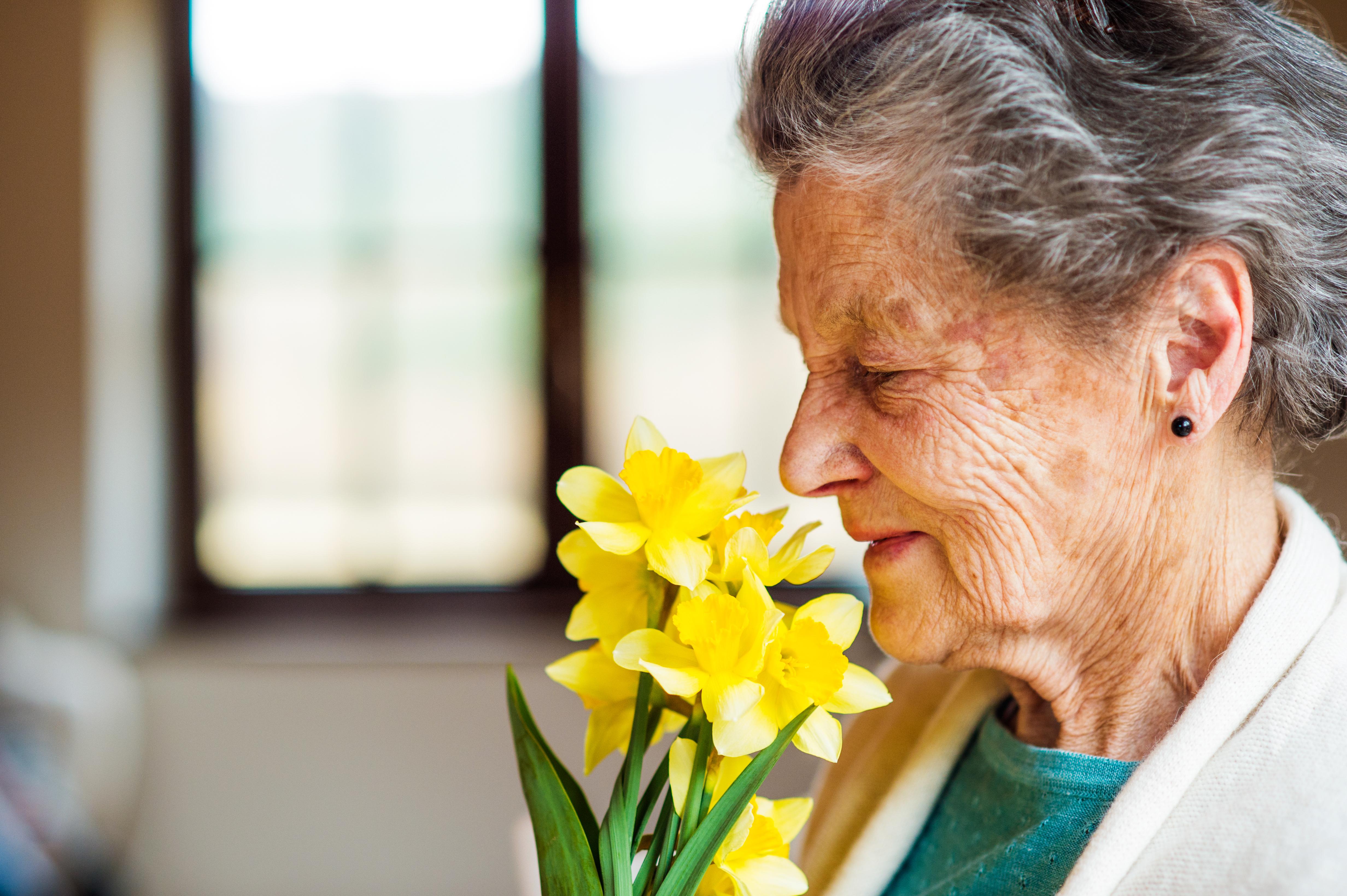 Även om man tar hänsyn till ålder, kön, demens, och andra hälsovariabler kvarstår sambandet mellan försämrat doftsinne och dödlighet.