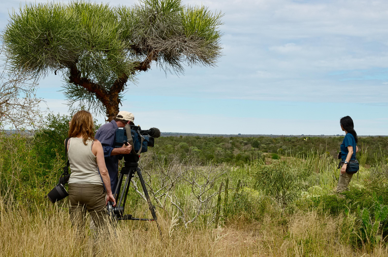De totalt 7500 deltagarna fick titta på tv-program ur en rad olika genrer som nyheter och drama men också naturdokumentärer.