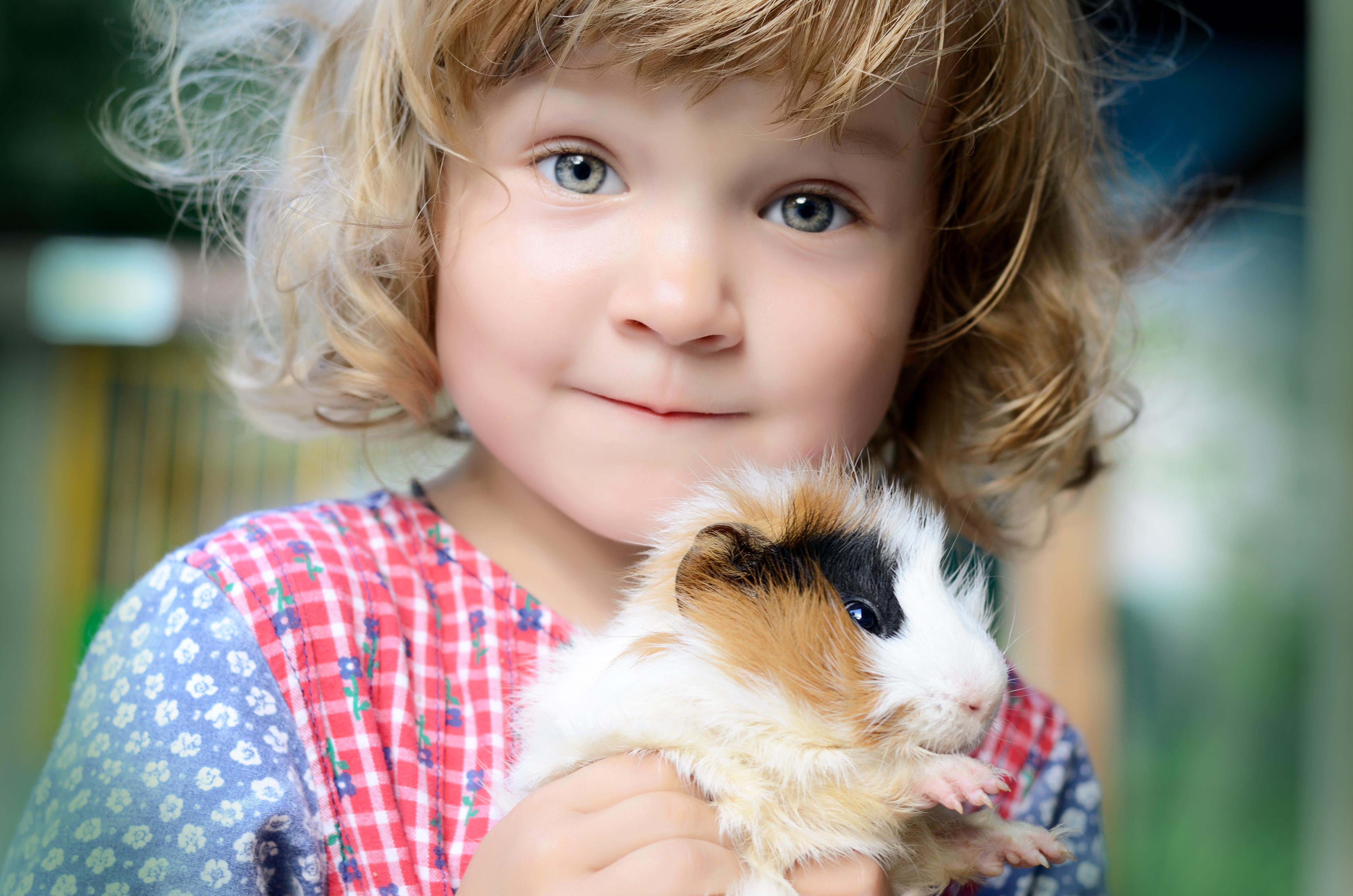 En enkel anledning till den positiva inverkan husdjur har på oss människor är att kontakten med husdjur inte kräver särskilt mycket från oss människor.