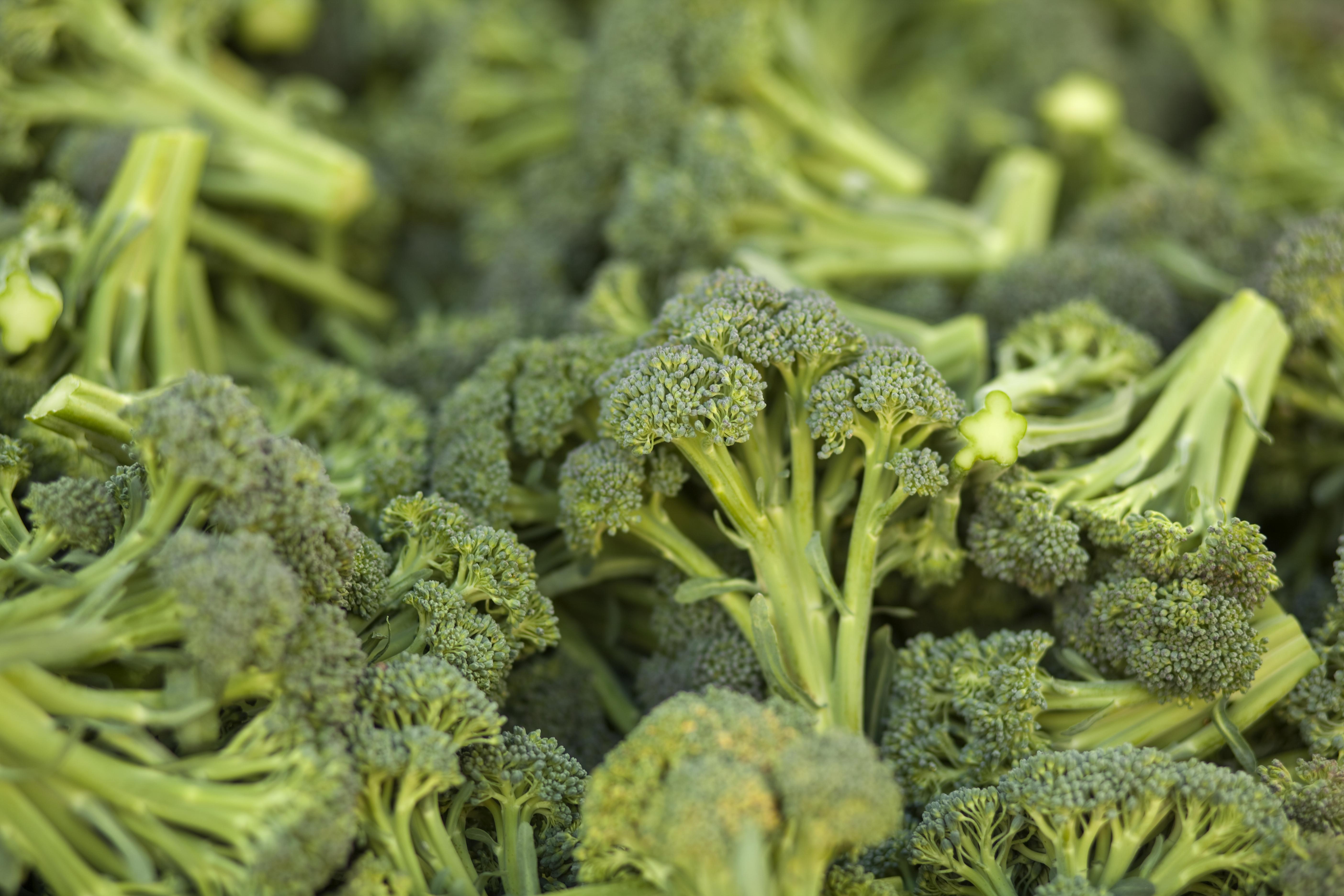 Broccoli kan vara lika effektivt för att sänka blodsocker som dagens läkemedelsbehandling