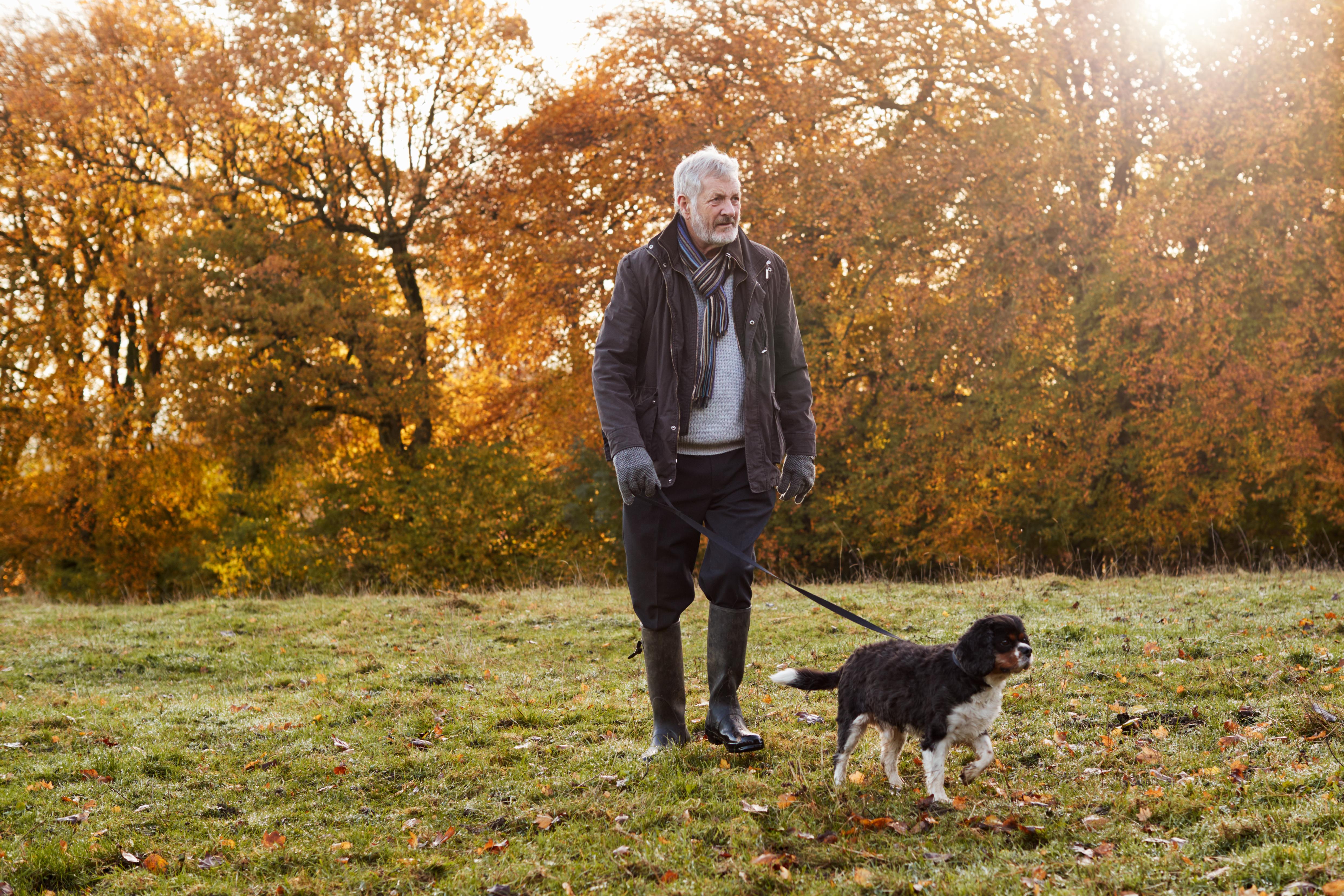Lätt fysisk aktivitet, som promenader, har effekt på de vanliga riskfaktorerna för svår stroke som exempelvis diabetes, blodtryck och blodfetter.