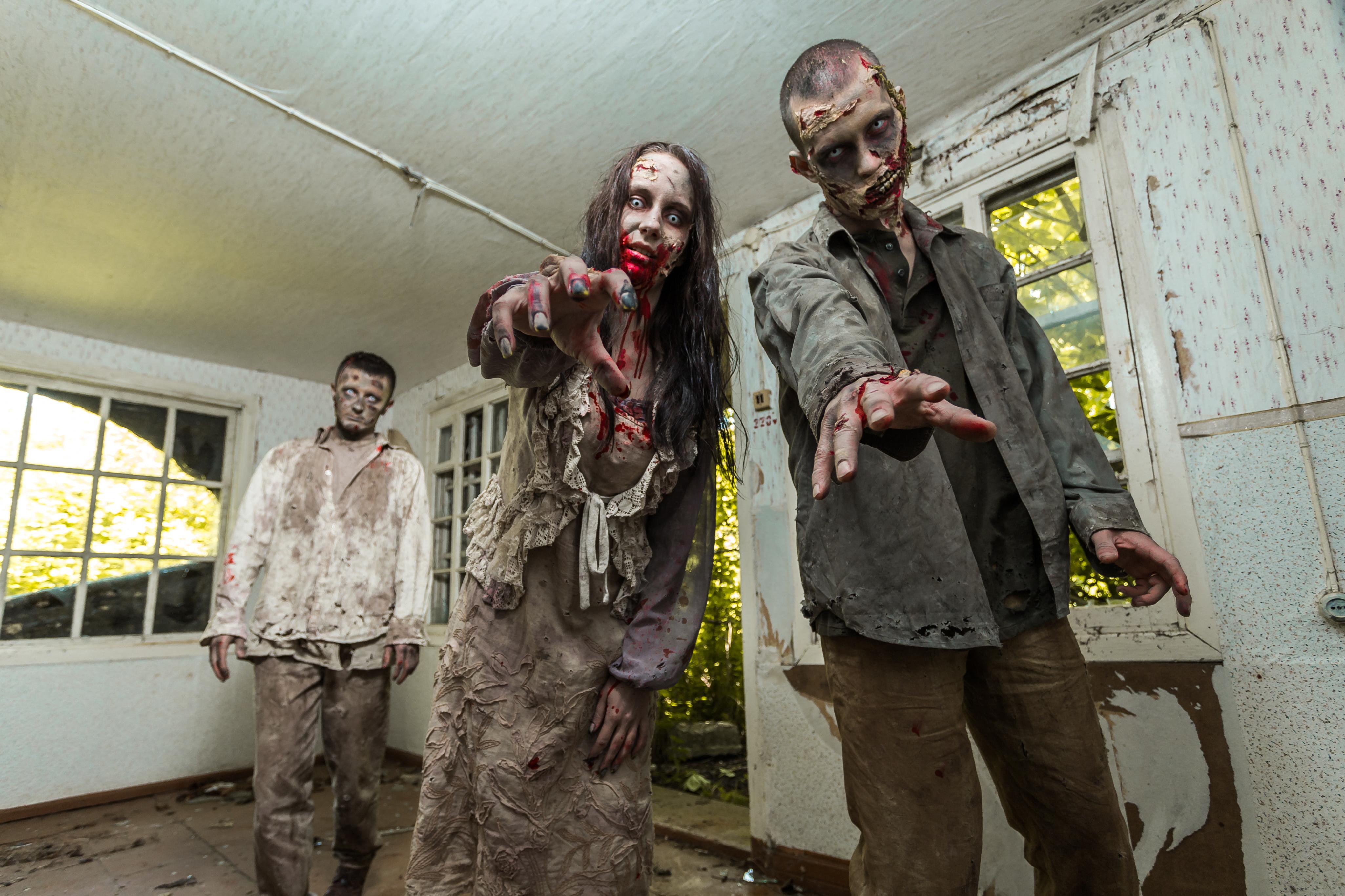 Zombier, eller levande döda, är människor som efter döden återuppstått.