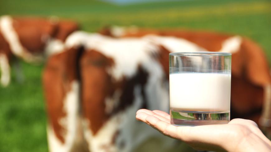 varför ska man dricka mjölk