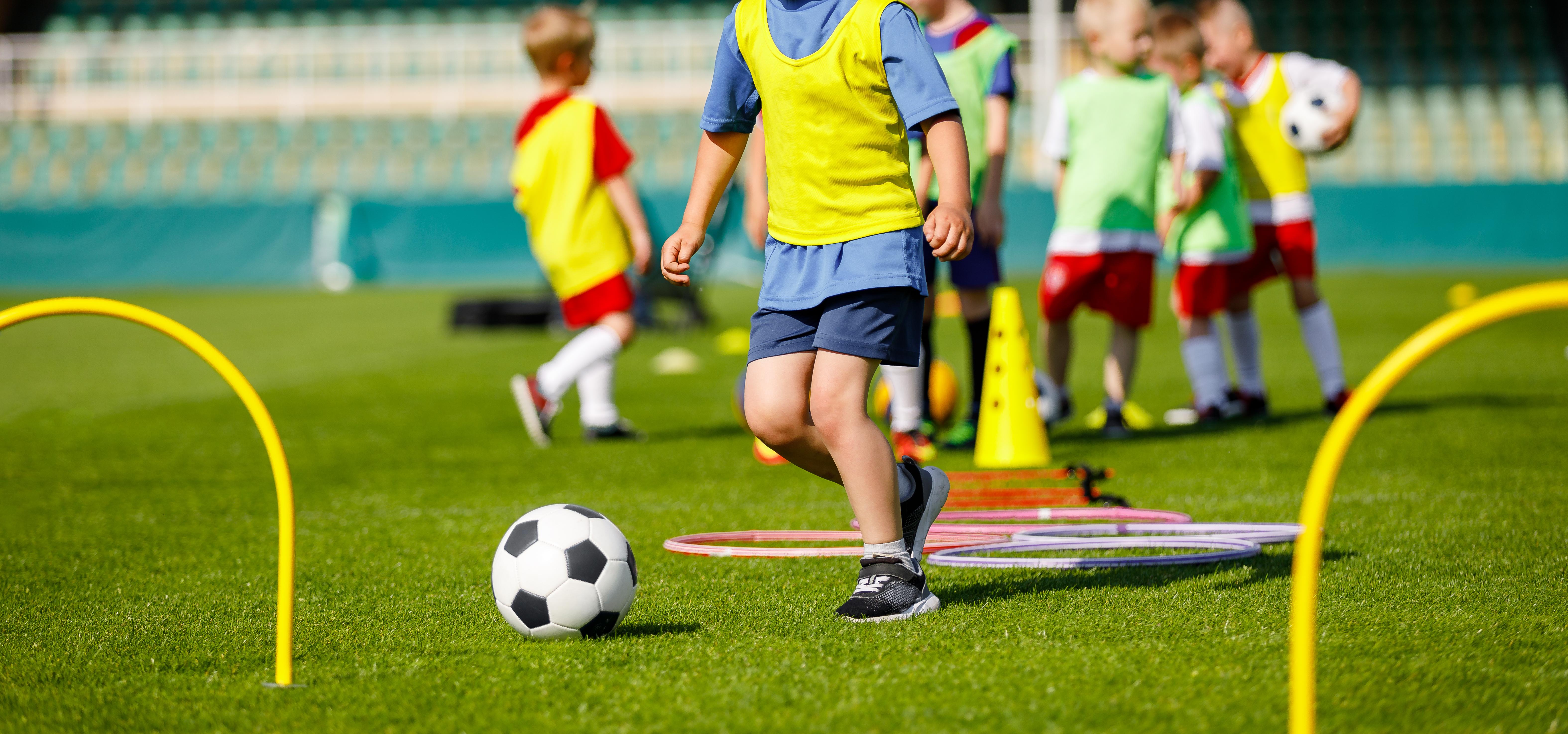 Trots att det finns andra anledningar till övervikt och fetma misstänks just att vara ensambarn vara en starkt bidragande faktor till övervikt.