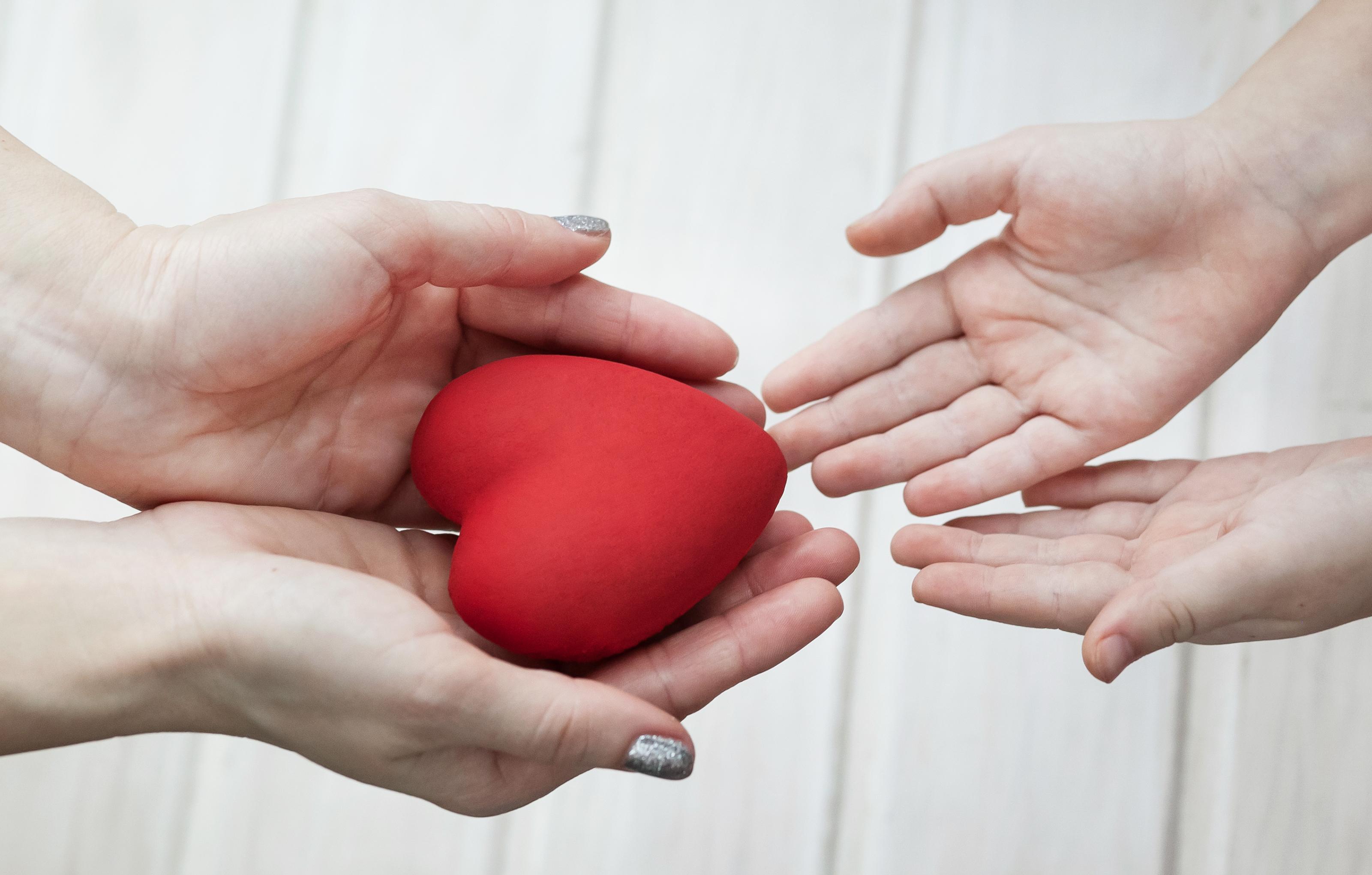 Omkring 800 personer väntar idag i Sverige på ett organ för transplantation.