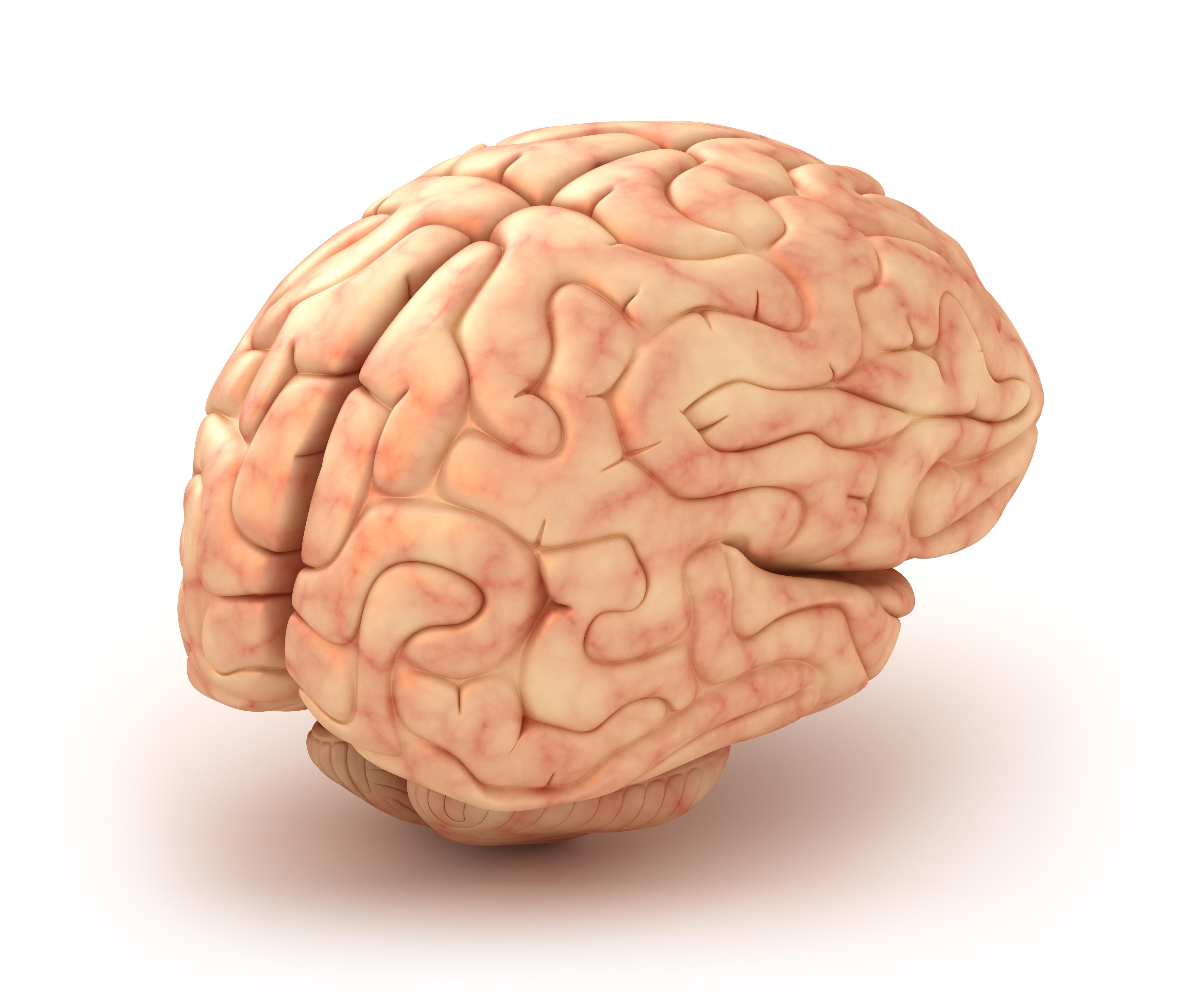 Hjärninflammation orsakas av virus i hjärnvävnaden.