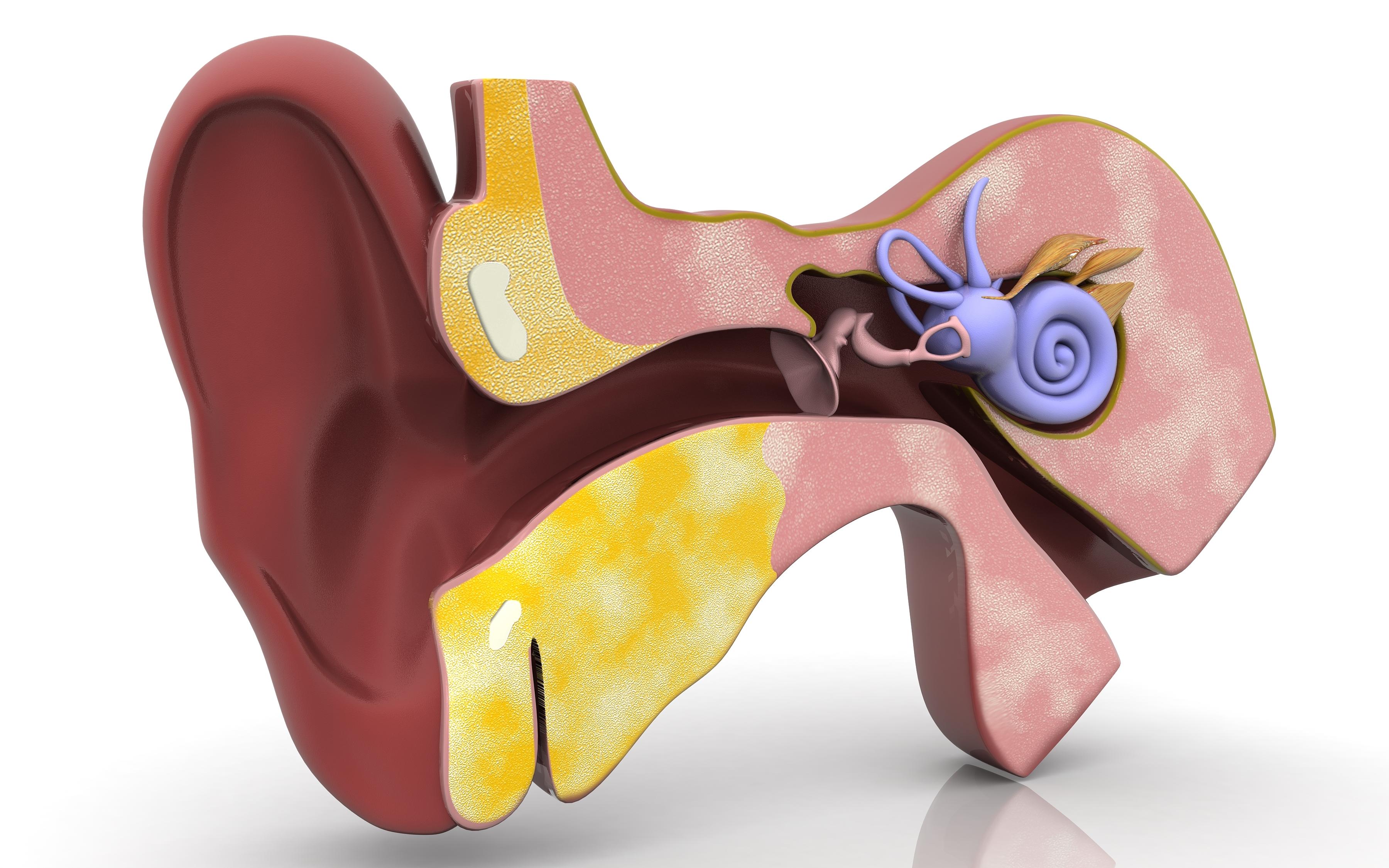 Virus på balansnerven orsakar kraftigt illamående och yrsel, men tillståndet är lätt botat.