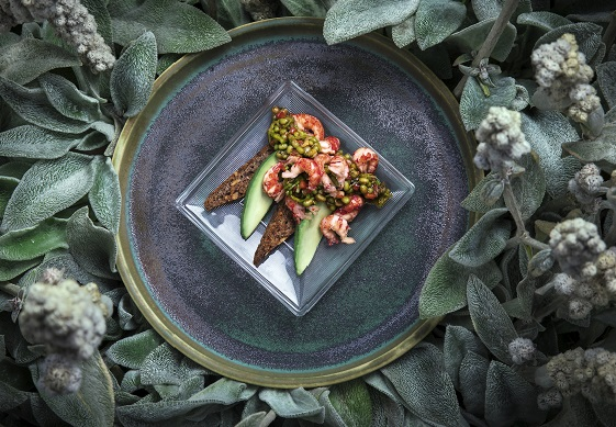 vewckans recept Mungbönsallad Låt bönor förändra ditt liv – kokboken Foto_Veronica Kindblad.jpg